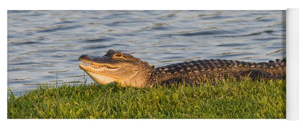 Alligator Smile Yoga Mat