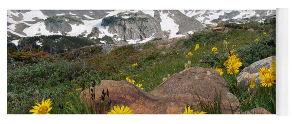 Yoga Mat featuring the photograph Alpine Sunflower Mountain Landscape by Cascade Colors