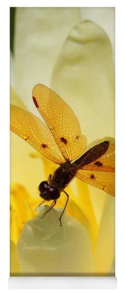 Amber Dragonfly Dancer Yoga Mat