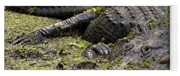 American Alligator Smile Yoga Mat
