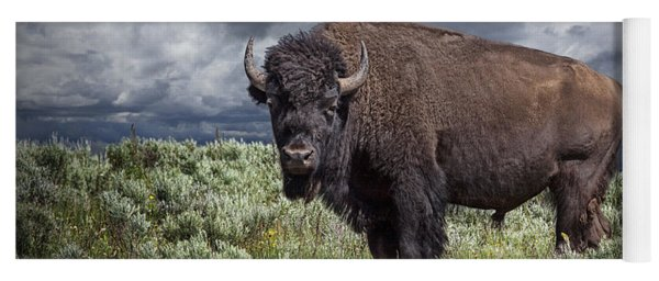 American Buffalo Or Bison In Yellowstone Yoga Mat