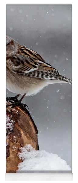 American Tree Sparrow In Snow Yoga Mat