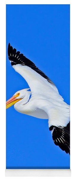 American White Pelican Greeting Card Yoga Mat