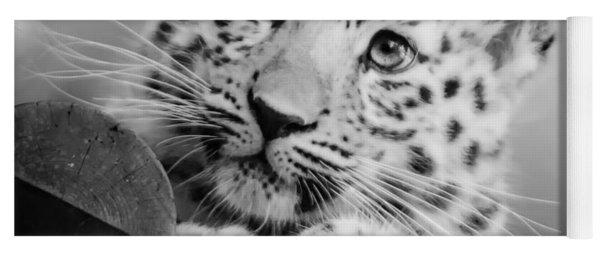 Amur Leopard Cub Portrait Yoga Mat