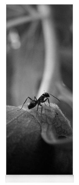 An Ant's Life Yoga Mat