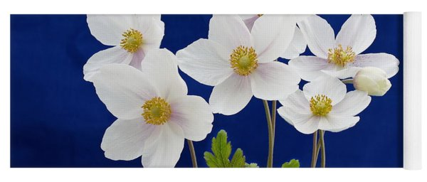 Yoga Mat featuring the photograph Anemone Sylvestris by Paul Gulliver