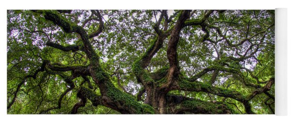 Angel Oak Tree Yoga Mat