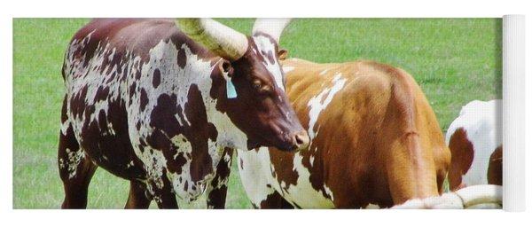 Ankole And Texas Longhorn Cattle Yoga Mat
