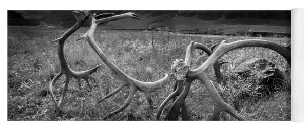 Antlers In Black And White Yoga Mat
