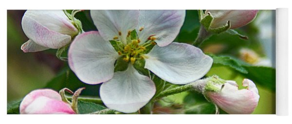 Apple Blossom And Buds Yoga Mat