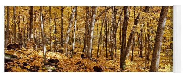 Arboretum Trail Yoga Mat