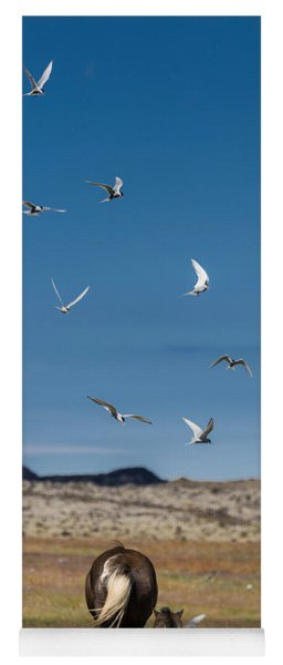 Arctic Terns With Mare And Foal Yoga Mat