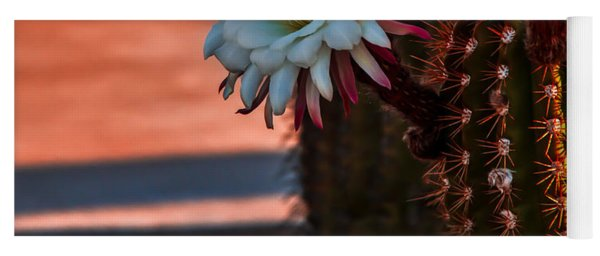 Argentine Cactus Yoga Mat