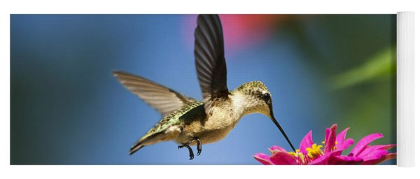 Art Of Hummingbird Flight Yoga Mat
