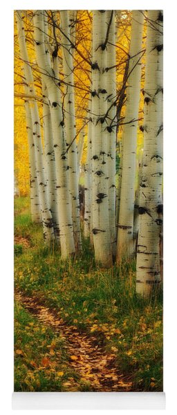 Aspen Path Yoga Mat