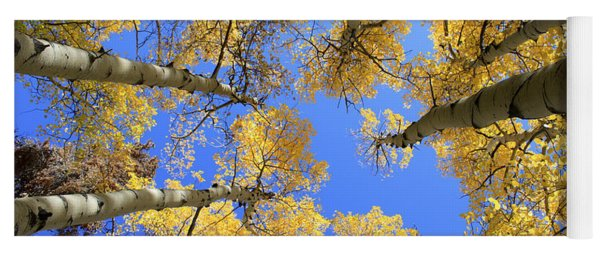 Aspens Skyward Yoga Mat