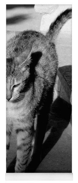 Aswan Cat Yoga Mat