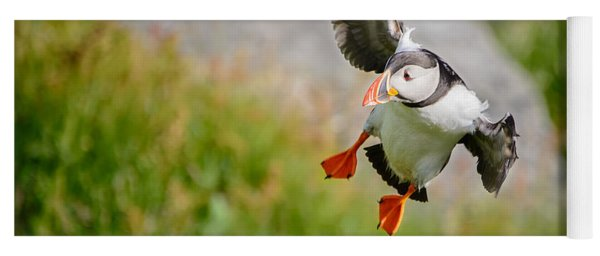 Atlantic Puffin, Incoming.... Yoga Mat