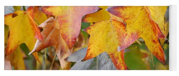 Autumn Acer Leaves Yoga Mat