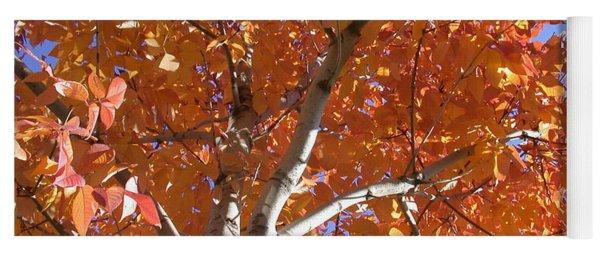 Autumn Aspen Yoga Mat