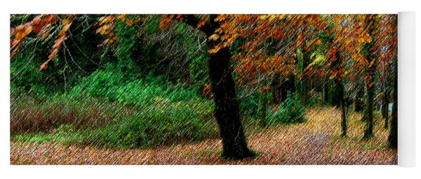 Autumn Entrance To Muckross House Killarney Yoga Mat