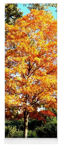 Autumn Glory Yoga Mat