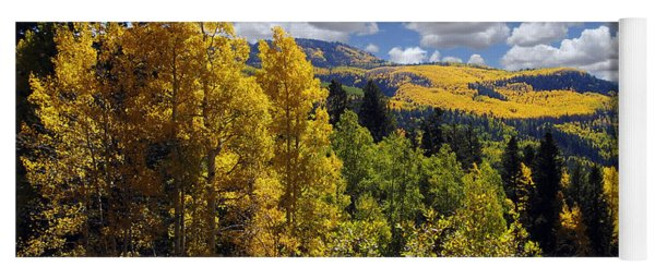Autumn In New Mexico Yoga Mat