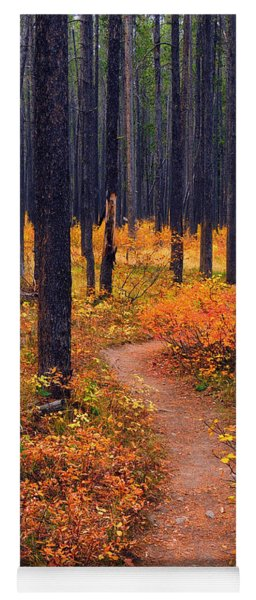 Autumn In Yellowstone Yoga Mat