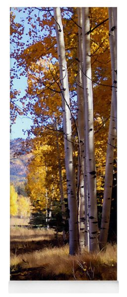 Autumn Paint Chama New Mexico Yoga Mat