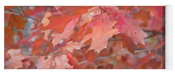 Autumn Paintbrush Yoga Mat