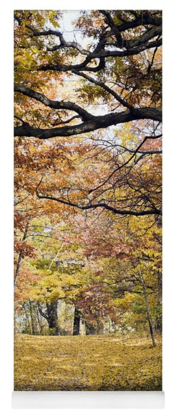 Autumn Pedestrian Path Yoga Mat