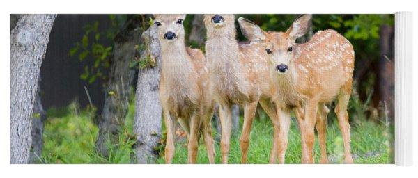 Baby Deer Yoga Mat