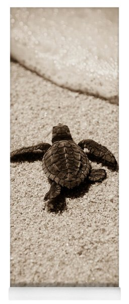 Yoga Mat featuring the photograph Baby Sea Turtle by Sebastian Musial