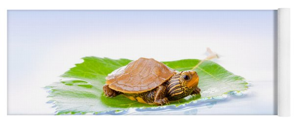 Baby Turtle On A Leaf Yoga Mat