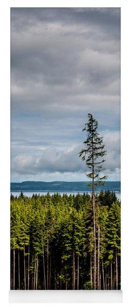 Logging Road Ocean View  Yoga Mat