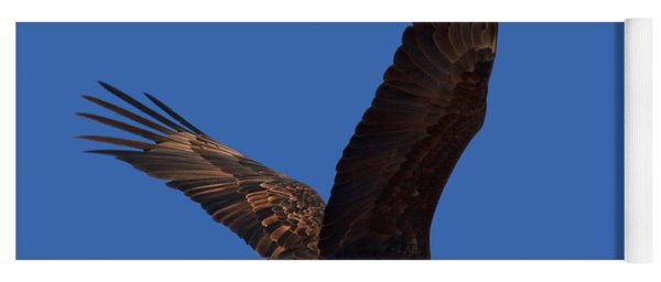 Bald Eagle Fly By Yoga Mat