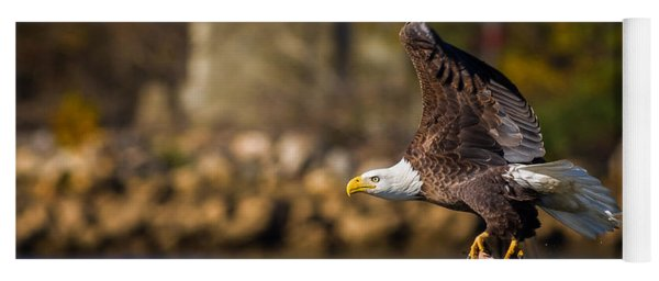 Bald Eagle In Flight Over Water Carrying A Fish Yoga Mat