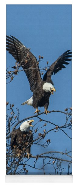 Bald Eagles Screaming Drb169 Yoga Mat