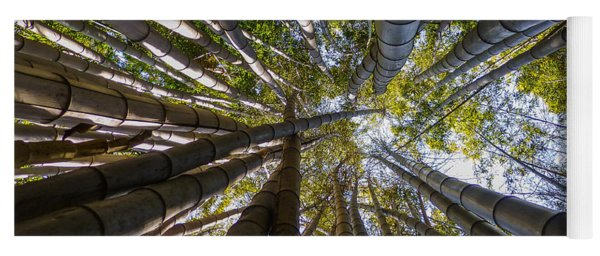 Bamboo Jungle Yoga Mat