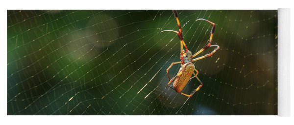 Banana Spider In Web Yoga Mat