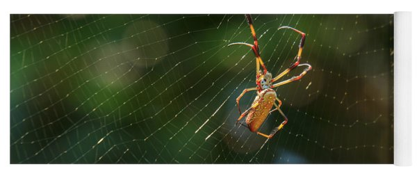 Banana Spider In Web Yoga Mat