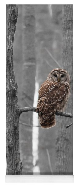 Barred Owl In Winter Woods #1 Yoga Mat
