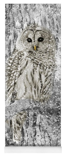Barred Owl Snowy Day In The Forest Yoga Mat