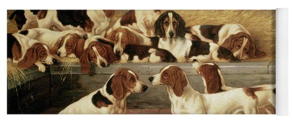 Basset Hounds In A Kennel Yoga Mat