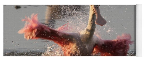 Bath Time - Roseate Spoonbill Yoga Mat