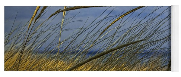 Beach Grass On A Sand Dune At Glen Arbor Michigan Yoga Mat