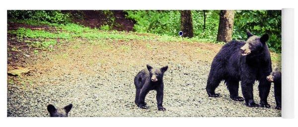 Yoga Mat featuring the photograph Bear Family Affair by Jan Dappen