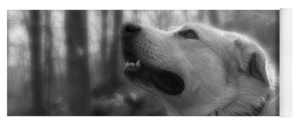 Bear Tooth Not Camera Shy Yoga Mat