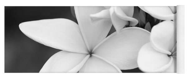 Beautiful Plumeria In Black And White Yoga Mat
