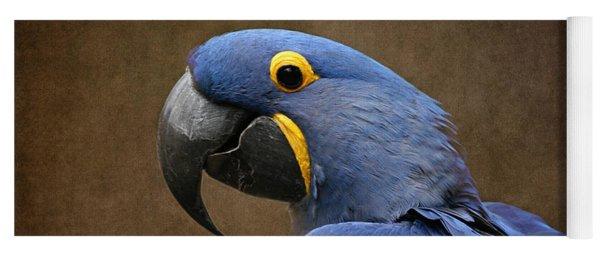 Beauty Is An Enchanted Soul - Hyacinth Macaw - Anodorhynchus Hyacinthinus Yoga Mat